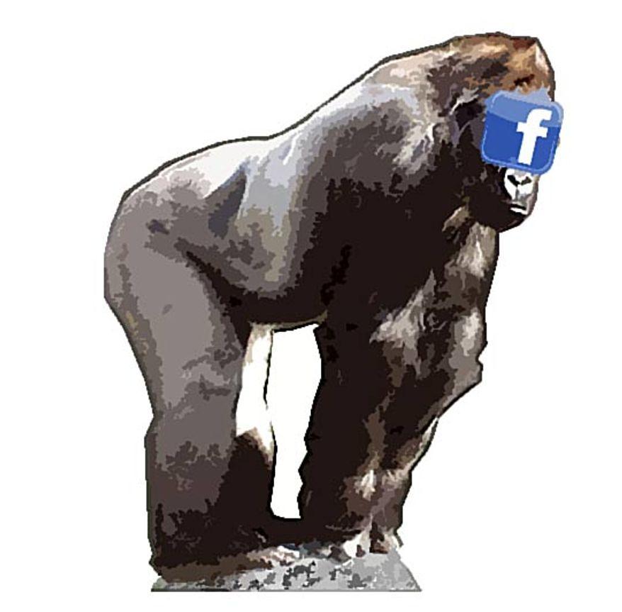 Illustration: Facebook by Alexander Hunter for The Washington Times