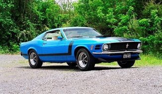 """Boss 302"" in black trim on the front fender, the chin spoiler and a shaker hood makes a hot Mustang."