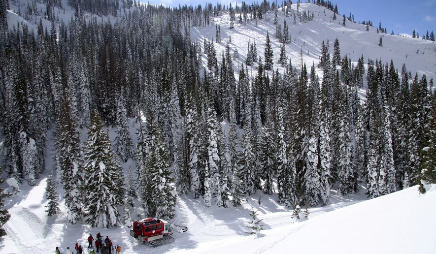 This February 2010 photo courtesy of Steamboat Powdercats/Kent Vertrees shows a Steamboat Powdercat Snow Cat with a group of skiers on Buffalo Pass near Steamboat Springs, Colo. Steamboat Powdercats offers backcountry skiing. (AP Photo/Steamboat Powdercats, Kent Vertrees)
