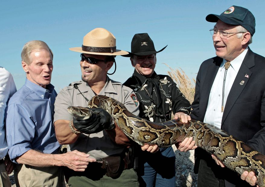 ASSOCIATED PRESS Interior Secretary Kenneth L. Salazar (right) is accompanied by (from far left) Sen. Bill Nelson, National Park Ranger Supervisor Al Mercado and Ron Bergeron of the Fish and Wildlife Service showing off a 13-foot python from the Everglades.