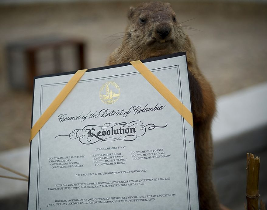 """A copy of the proclamation declaring Thursday as """"Potomac Phil Day"""" in the District of Columbia is on display during the inaugural Groundhog Day event at Dupont Circle in Washington on Thursday, Feb. 2, 2012. (Rod Lamkey Jr./The Washington Times)"""