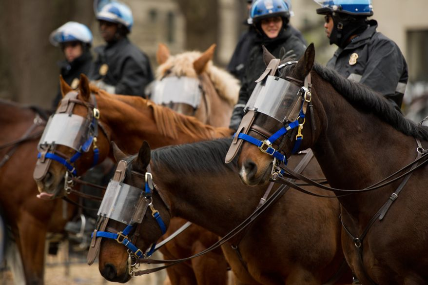 Park police horses wear face protection during a raid on the Occupy encampment at McPherson Square, Washington, D.C., Saturday, Feb. 4, 2012. Police and protesters clashed throughout the day as tents and camping equipment were removed by park police and maintenance officials, some dressed in hazmat suits.(Andrew Harnik/The Washington Times)