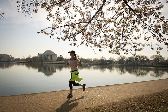 With the Jefferson Memorial in the distance across the water, a woman runs along the Tidal Basin, passing under low hanging branches as the cherry blossoms make an early arrival in Washington, D.C., Thursday, March 15, 2012. (Rod Lamkey Jr/The Washington Times)