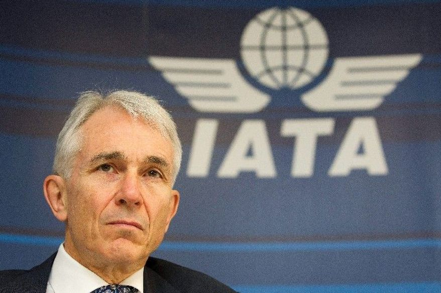 """Historically, if GDP falls below 2 percent, the industry returns a collective loss. So it would not take much of a shock to turn our very modest profit projection to a net loss,"" said Tony Tyler, the International Air Transport Association's chief executive, during a press conference in Geneva on Tuesday. (Associated Press)"
