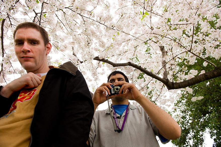 """Autistic adults Matt D., left, and Jimmie R., right, with Community Services for Autistic Adults and Children, based in Montgomery Village, Md., take photographs of the Cherry Blossoms along the Tidal Basin, Washington, D.C., Wednesday, March 21, 2012. The """"InFocus Project†is a way for adults with autism to develop forms of self expression and social skills while producing work that has been featured in art shows, given to donors to C.S.A.A.C., and sold on an online store. (Andrew Harnik/The Washington Times)"""