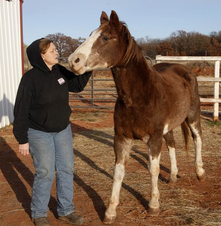 **FILE** Cheri White Owl, founder of Horse Feathers Equine Rescue, is pictured with one of the 33 horses for which she cares in Guthrie, Okla., on Nov. 29, 2011. Ms. White Owl said she's seen more horse neglect during the recession, which coincided with the end of horse slaughtering in the U.S. (Associated Press)