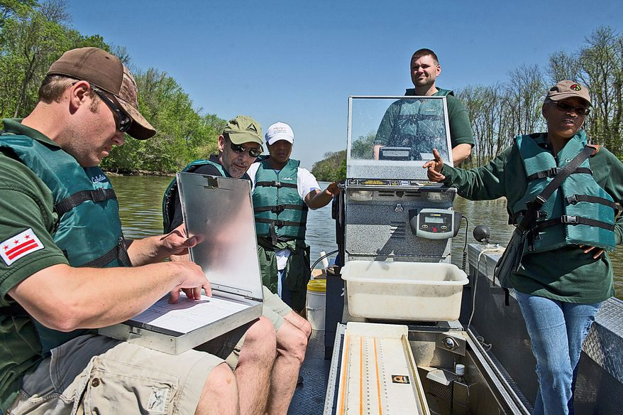 Luke Lyon makes notes on fish pulled out of the Anacostia. Joining him (from left) are Christophe Tulou, Donna Henry, Danny Ryan and Nicoline Shulterbrandt. (Barbara L. Salisbury/The Washington Times)