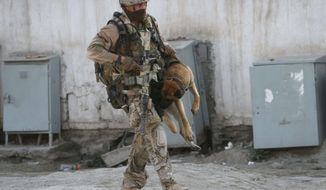 ** FILE ** A NATO coalition soldier carries a sniffer dog after a gunbattle in Kabul, Afghanistan, on Monday, April 16, 2012. (AP Photo/Musadeq Sadeq)