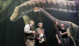 "Visitors to the American Museum of Natural History in New York inspect a detailed model of a 60-foot-long Mamenchisaurus at ""The World's Largest Dinosaurs'"" exhibit. The exhibition explored the biology of the long-necked and long-tailed sauropods. A new study in the journal Current Biology suggests that sauropods produced enough methane, through burps and flatulence, that it helped keep an already warm Earth warmer. (Associated Press)"