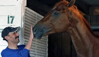I'll Have Another received a playful rub on the nose from groomer Inocencio Diaz on Sunday at Churchill Downs in Louisville, Ky. The Kentucky Derby winner already has flown to Baltimore for the Preakness on May 19. (Associated Press)