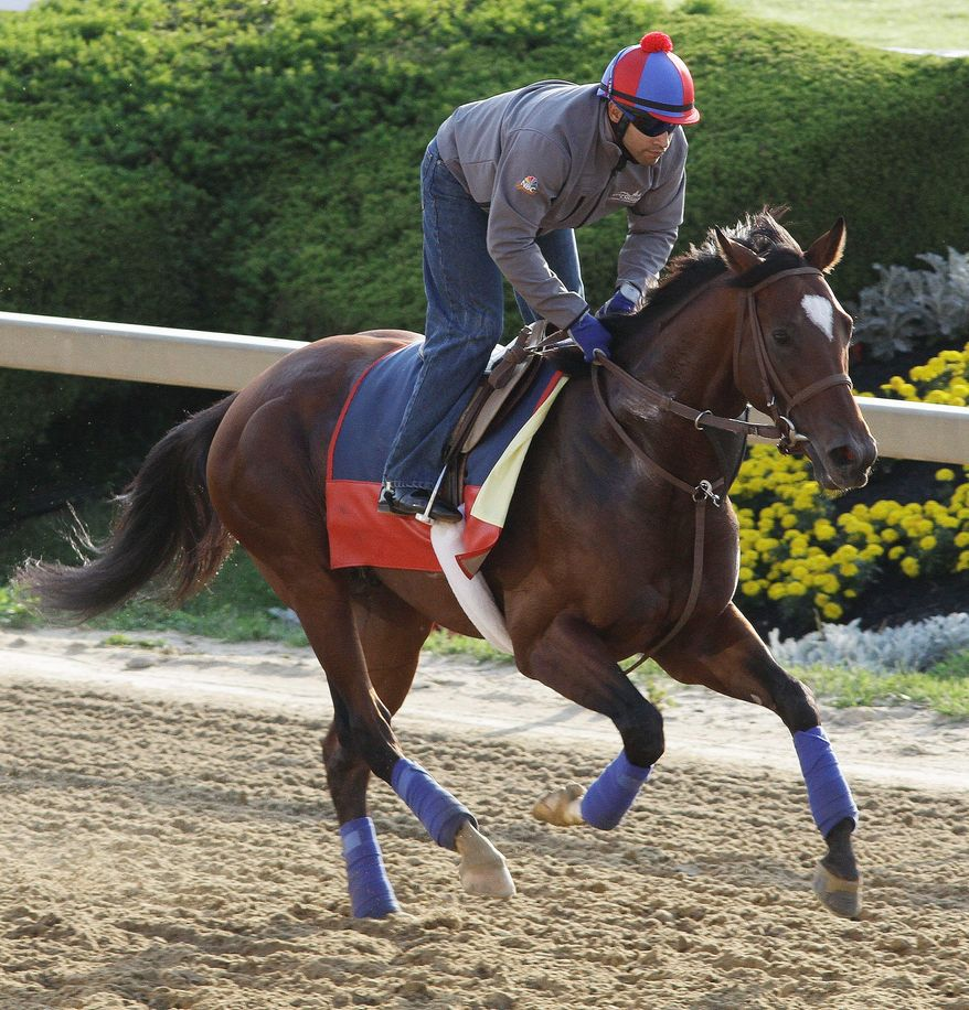 Went the Day Well is ridden by exercise rider Zeke Castro. (Associated Press)