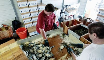 Wade Christian (left) and Felix Ronquille sort crabs at Crescent Seafood in Lafitte, La., on May 16. This spring, catches are down, and anxiety is growing that ill effects of the BP spill may be far from over.