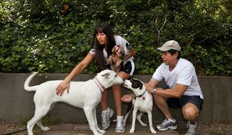 Tracie Sorrentini holds her small dogs Punky (left) and Puccini as her father Irving Sorrentini helps with dogs she's caring for while their owners are away, Yuki (left) and Lexi in Los Angeles. DogVacay brings together dog lovers with casual and professional dog sitters to provide an affordable experience for pets. (Associated Press)
