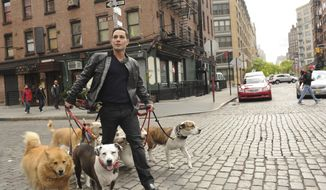 "This undated image released by CBS shows dog guru Justin Silver, host of the new show ""Dogs in the City,"" walking dogs in New York. Every Wednesday beginning May 30, Silver will try to help New York City hounds and humans tackle unsettling problems like joint custody after divorce or dealing with significant others who just moved in. (AP Photo/CBS, Heather Wines)"