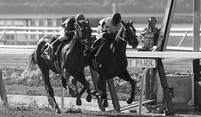 Jockey Steve Cauthen (3) rides Affirmed to win the Belmont Stakes and the Triple Crown narrowly ahead of Alydar, ridden by jockey Jorge Velasquez, at Belmont race track in Elmont, N.Y., in this June 10, 1978 photo. Belmont racetrack celebrates its 100th birthday next Wednesday. (AP Photo)