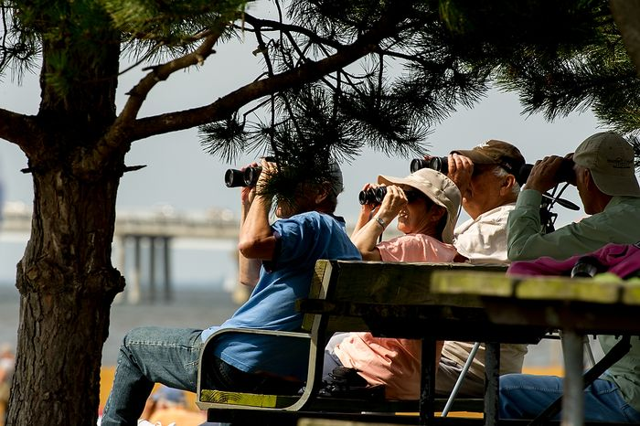 "Wayne Sterling (from left) and his wife, Phyllis, both of Bridgeville, Del., and John Elliott of Queenstown, Md., watch June 13, 2012, through binoculars as tall ships pass under the Chesapeake Bay Bridge en route to the Inner Harbor in Baltimore for a bicentennial commemoration of the War of 1812. The week-long ""Star-Spangled Sailabration"" includes free tours of the ships, waterside festivities, an air show featuring the Blue Angels and the world premiere of ""Overture for 2012,"" composed by Philip Glass. (Andrew Harnik/The Washington Times)"