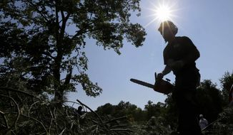 A worker uses a chainsaw to clear branches from a tree that fell onto the 14th fairway at Congressional Country Club in Bethesda, Md., Saturday, June 30, 2012, after a strong storm blew through overnight. The AT&T National golf tournament was postponed to allow workers to clear the course. (AP Photo/Patrick Semansky)