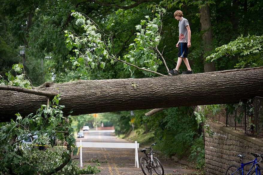 Tyler Taylor, 14, of Falls Church, Va., walks on a large fallen tree on W. Great Falls Street in Falls Church, Va., Sunday, July 1, 2012, two days after a deadly, severe storm left hundreds of thousands of people without power. (Rod Lamkey Jr./The Washington Times)