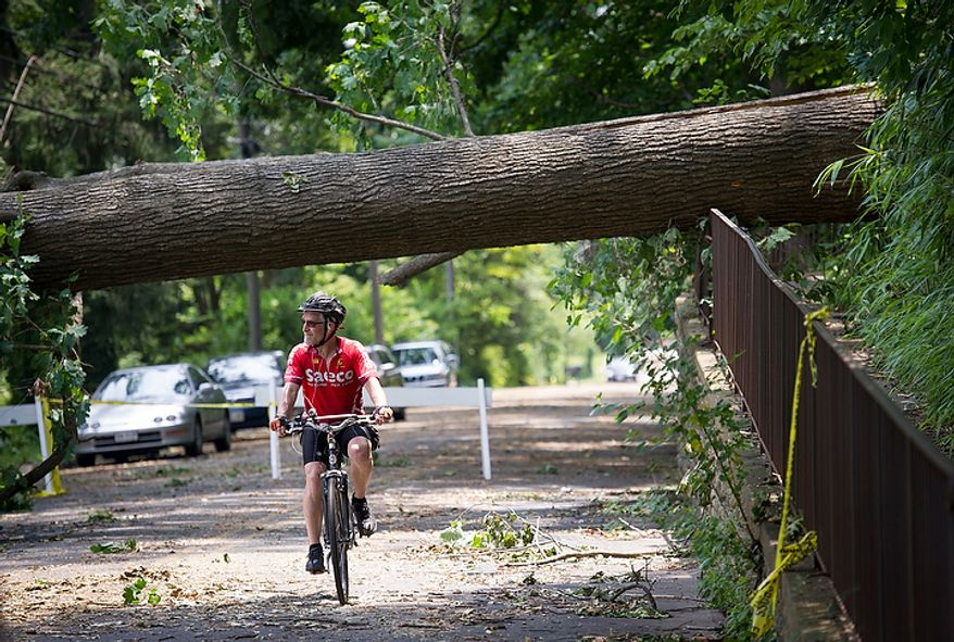 Cyclist Jim Heiby of Annandale, Va., cruises on his bike under a large fallen tree along W.Great Falls Street in Falls Church, Va., Sunday, July 1, 2012, two days after a deadly, severe storm left hundreds of thousands of people without power. (Rod Lamkey Jr./The Washington Times)