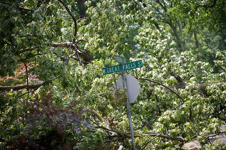 Large trees create a canopy of leaves and broken branches at the corner of W.Great Falls Street and N.Virginia Avenue in Falls Church, Va., Sunday, July 1, 2012, two days after a deadly, severe storm left hundreds of thousands of people without power. (Rod Lamkey Jr./The Washington Times)