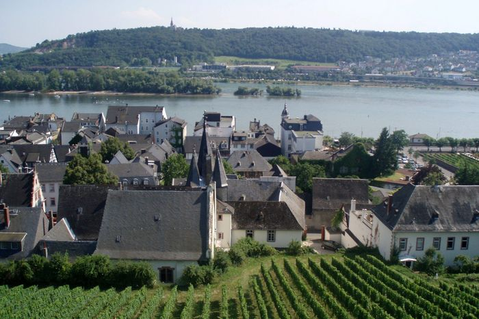 This July 2012 photo shows the countryside during a cable car ride in Rudesheim, Germany, while at a stop on a waterway tour on the the river ship Avalon Felicity. (Associated Press)