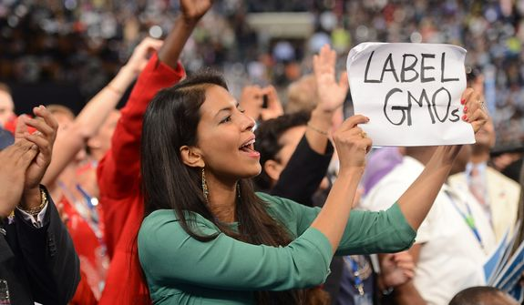 North Carolina delegate Vani Hari, who is staging a one-woman protest that the Obama administration has not addressed the issue of genetically modified crops, is interviewed at the Democratic National Convention at the Time Warner Arena in Charlotte, N.C., on Wednesday, September 5, 2012. (Barbara Salisbury/ The Washington Times)