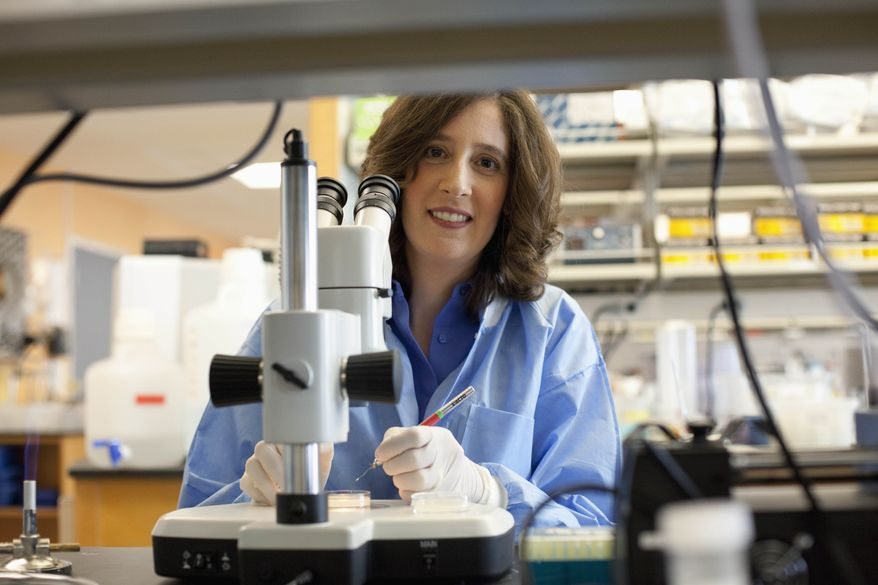 """Elissa Hallem, 34, a neurobiologist at the University of California at Los Angeles who explores the physiology and behavioral consequences of odor detection in invertebrates, is among 23 recipients of this year's MacArthur Foundation """"genius grants."""" (AP Photo/Courtesy of the John D. and Catherine T. MacArthur Foundation, Stephanie Diani)"""