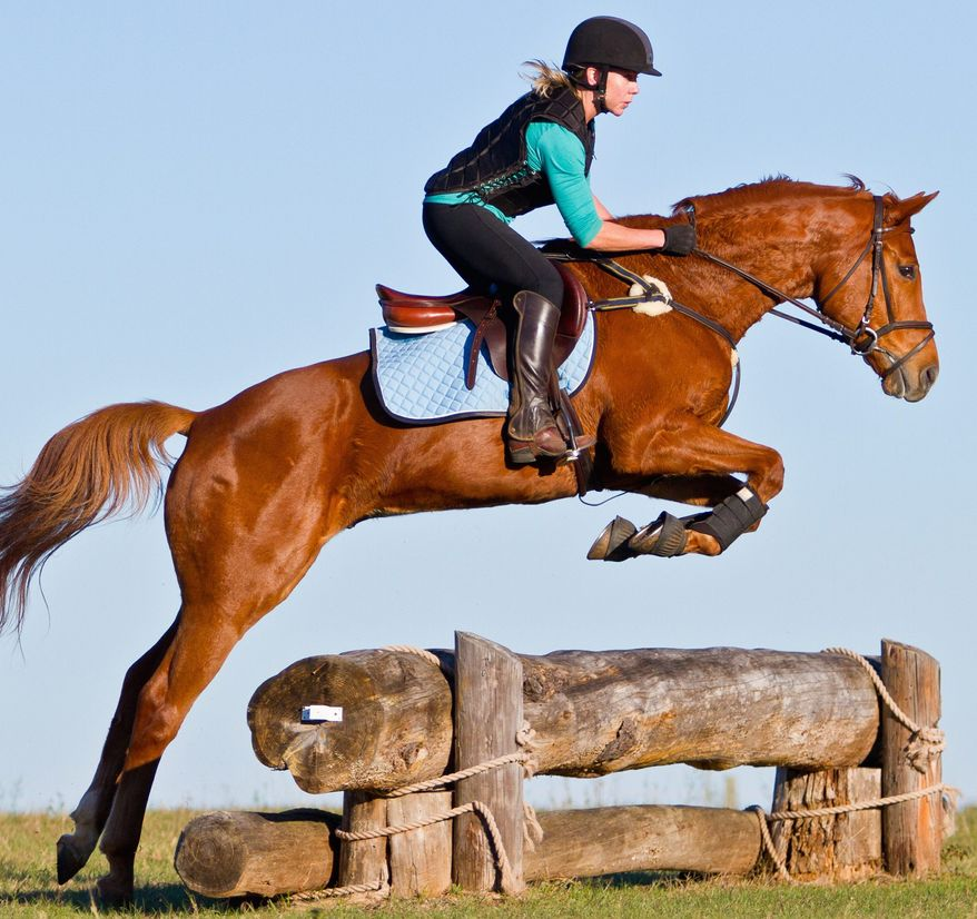 Equestrian Event: Morven Park Fall Horse Trials