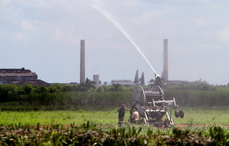 Workers irrigate a sugar cane field in Jaronu, Cuba. (Associated Press)