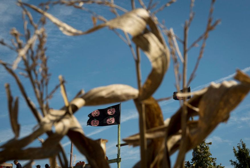 Halloween flags fly in the wind above cornstalks at Cox Farms in Centreville,Va. (Rod Lamkey Jr./The Washington Times)