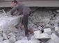 SYRIA_WEB_20121018_0001