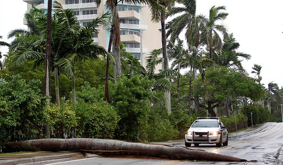 A Fort Lauderdale Police car stops at a fallen palm tree trunk blocking a road in Fort Lauderdale, Fla., on Oct. 25, 2012. (Associated Press)