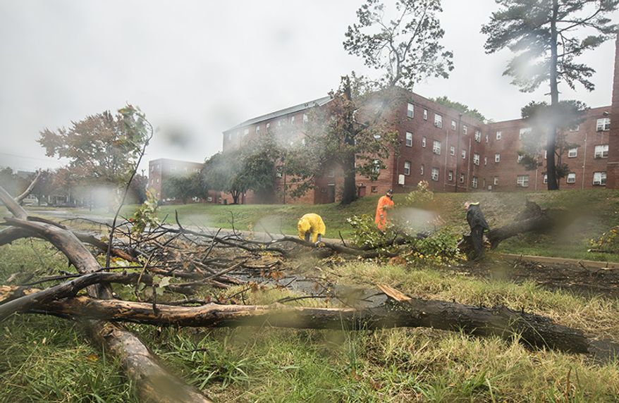 Police officers from Arlington County help remove a downed tree from an exit ramp off of state route 50, in Arlington, VA., Monday, October 29, 2012. Winds from hurricane Sandy removed the tree from his stationary position and toppled it over onto the road, blocking traffic. (Andrew S. Geraci/The Washington Times)