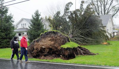 Homeowner Raymond Gara, left, and another man looks on as a tree sits on his house on Raubsville Road after strong storm winds brought on by Hurricane Sandy took it down, Monday, Oct. 29, 2012, in Williams Township, Pa. (AP Photo/The Express-Times, Matt Smith)