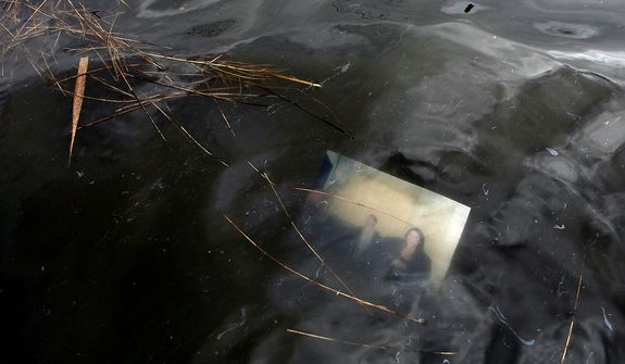 A photograph floats just below the surface of a flooded street in the aftermath of superstorm Sandy, Tuesday, Oct. 30, 2012, in Massapequa, N.Y. (AP Photo/Jason DeCrow)