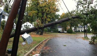 A fallen tree is propped up by a power line in the Beverly Hills neighborhood of Alexandria (Meredith Somers/The Washington Times)