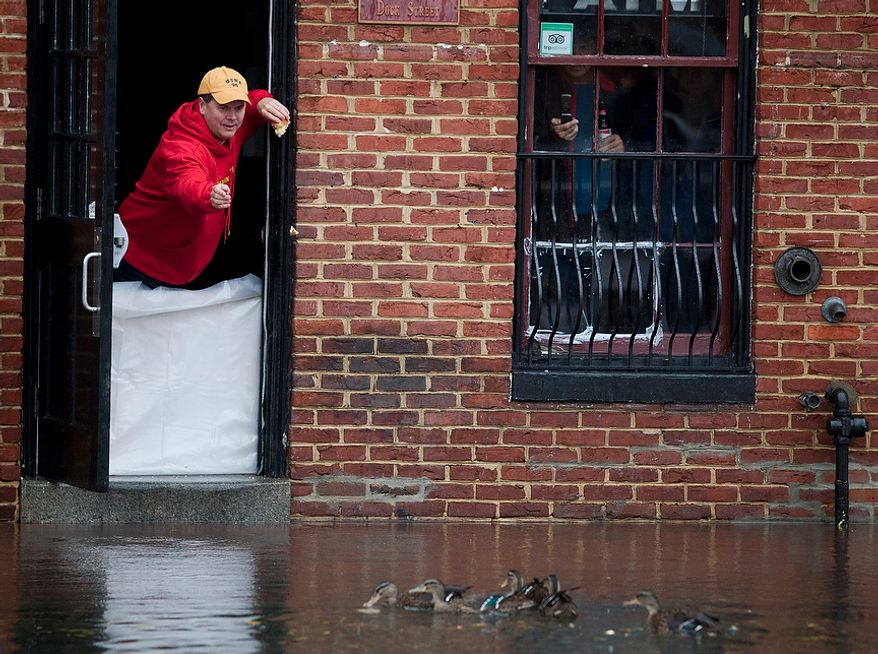 John O'Leary, 41, from Annapolis, Md., feeds the ducks from  Armadillos restaurant front door at Dock St. which had nearly a foot and half of water, Annapolis, Md., Tuesday, Oct. 30, 2012. The storm left early a foot and half of water along Dock St. but the stores are more worried about the tide which rises at 5:45pm and could bring another two feet of water. (Craig Bisacre/The Washington Times)