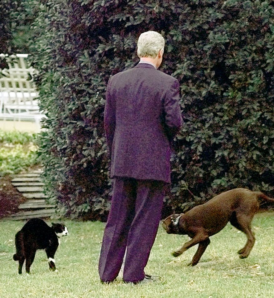 President Clinton attempts to introduce his dog Buddy to his cat Socks during an impromptu meeting after returning from a visit to the Department of Education, Tuesday, Jan. 6, 1998. The meeting, outside the Oval Office,  apparently didn't go well. Socks, hair raised high, stood his ground until Clinton and Buddy made their exit to the Oval Office. (AP Photo/Greg Gibson)