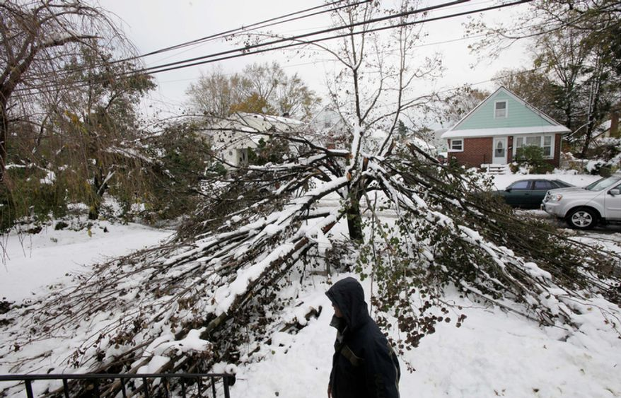 **FILE** Firmo Banez poses next to a downed tree in front of his home in Elmont, N.Y., on Nov. 8, 2012. Firmo lost electrical power to the house following Superstorm Sandy ten days before, had it restored two days later by the Long Island Power Authority, only to have it go out again a week later during a Nor'easter snowstorm. (Associated Press)
