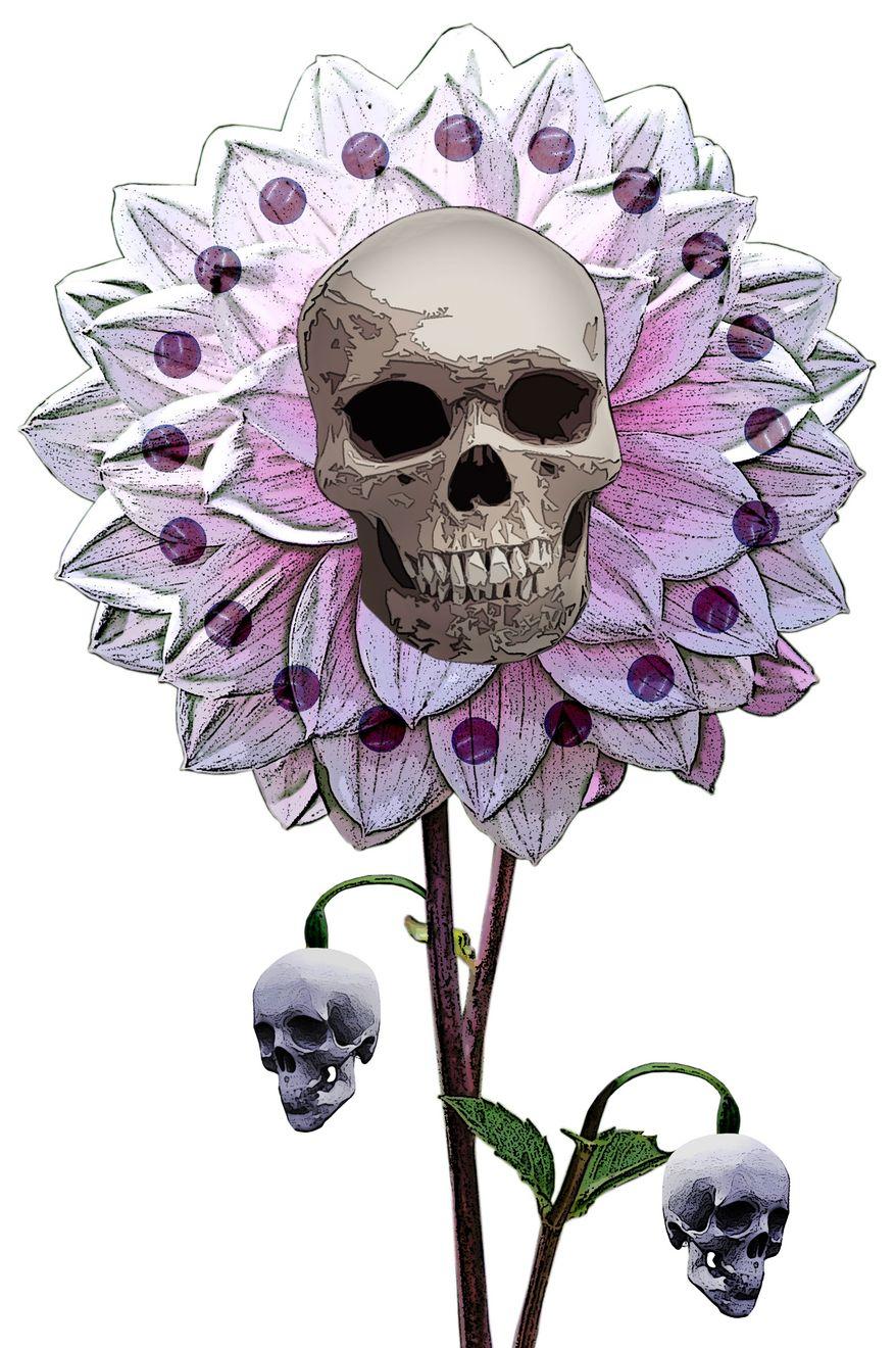 Illustration Skull Flower by Greg Groesch for The Washington Times