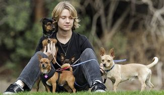 In this Nov. 16, 2012, photo, Lou Wegner, the founder of Kids Against Animal Cruelty, poses for a photo with his rescued his dogs, from left, Kippy, Draco, Pearl and Henry in Burbank, Calif. Lou, a 16-year-old actor and singer from Columbus, Ohio, started Kids Against Animal Cruelty when he was 14. The organization, which uses social networking to encourage adoptions at high-kill animal shelters, has helped 20,000 pets escape euthanasia in two years. (AP Photo/Damian Dovarganes)