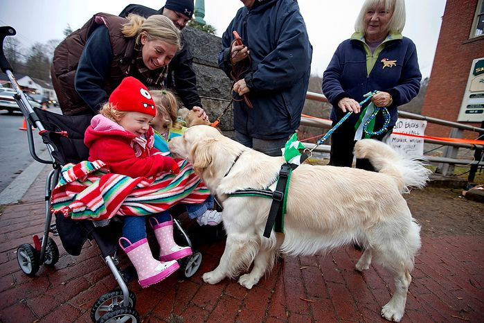 Addison Strychalsky, 2, and her mother, Jennifer, left, of Newtown Conn., play pets Tilley, a golden retriever therapy dog, during a visit from the dogs and handler Mary Minard, right, to a memorial for the Sandy Hook Elementary School shooting victims, Tuesday, Dec. 18, 2012, in Newtown, Conn. (AP Photo/David Goldman)