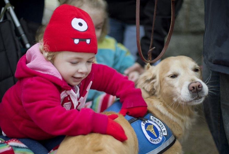 ** FILE ** Addison Strychalsky, 2, of Newtown, Conn., pets Libby, a golden retriever therapy dog, during a visit from the dogs and their handlers to a memorial for the Sandy Hook Elementary School shooting victims on Tuesday, Dec. 18, 2012. (AP Photo/David Goldman)