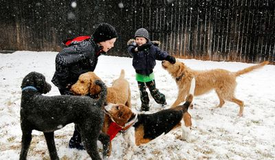Walker Bowerman, 10, left, and Hughes Bowerman, 6, plays with family dogs in the snow in Arlington, Texas on Tuesday, Dec. 25, 2012. (AP Photo/The Dallas Morning News, David Woo)