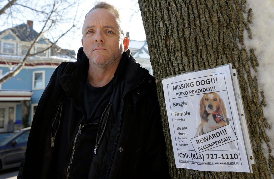 Author Dennis Lehane is offering a monetary reward and said he will name a character in his next book after whoever finds his dog Tessa, who has been missing from his Massachusetts home since Christmas Eve. (Associated Press)