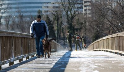 Allan Stewert, a D.C. resident, walks his dog, Bobo, down he walking bridge leading to Theodore Roosevelt Island as National Park Service rangers use high-powered leaf blowers to remove fresh snow from it, in Washington, D.C., Thursday, Jan. 24, 2013. (Andrew S. Geraci/The Washington Times)
