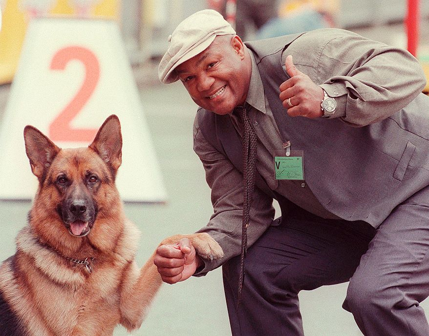 "Commissioner Rex, left, a German Shepherd dog and U.S. boxer George Foreman pose for photographers Saturday, Aug. 30, 1997, in Duesseldorf. Foreman is a guest at the German Shepherd dog championship. He wants to start breeding German Shepherd dogs in the U.S., where he already owns five dogs. Commissioner Rex' real name is ""Reginald von Ravenhorst"" and is well known as a famous star in a German TV production. (AP Photo/Edgar Schoepal)"