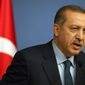 Turkish Prime Minister Recep Tayyip Erdogan speaks during a joint news conference with German Chancellor Angela Merkel, unseen, in Ankara, Turkey, Monday, Feb. 25, 2013. (AP Photo/Burhan Ozbilici)