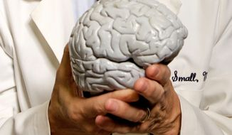**FILE** University of California, Los Angeles, Professor of Psychiatry Dr. Gary Small holds a human brain model at his office at the Semel Institute for Neuroscience & Human Behavior in Westwood, Calif., on Dec. 1, 2008. (Associated Press)