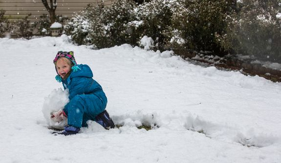 Reily Sweeney, 5, pushes a snowball through the snow in an effort to make a snowman in a neighborhood in Fairfax, Va., on March 6, 2013. (Andrew S. Geraci/The Washington Times)